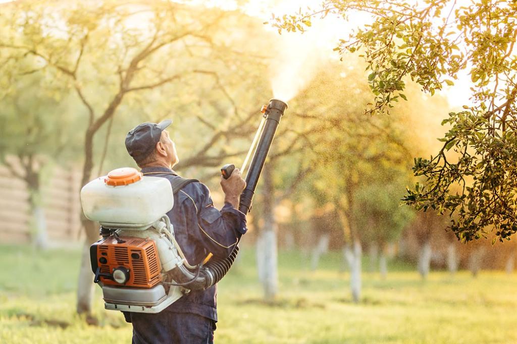 環境消毒病媒蚊防治