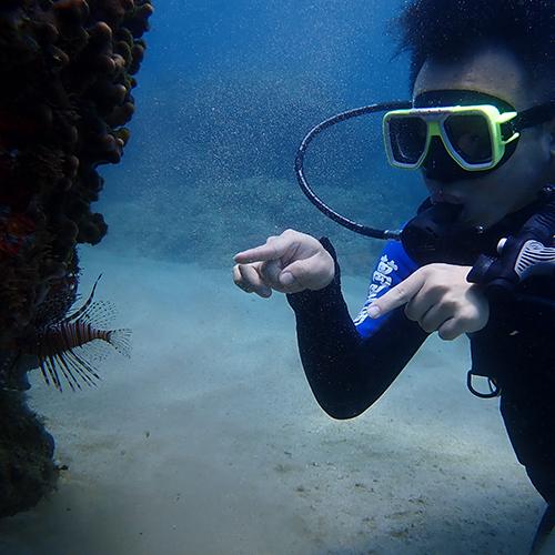 墾丁體驗潛水 (萬里桐浮潛/墾丁潛水)
