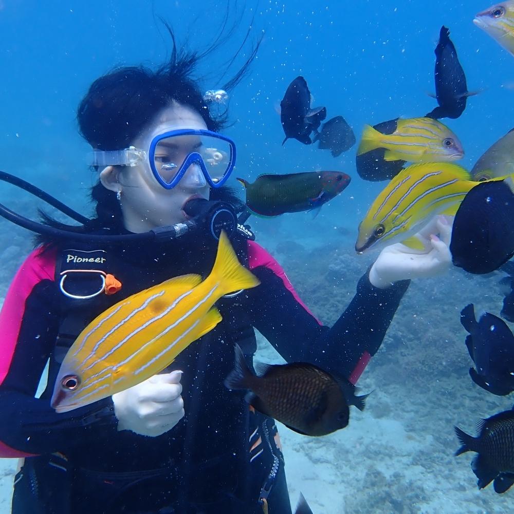 墾丁體驗潛水 (萬里