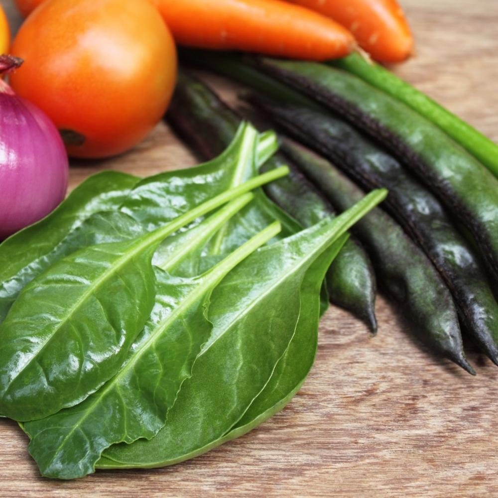 高雄蔬菜批發