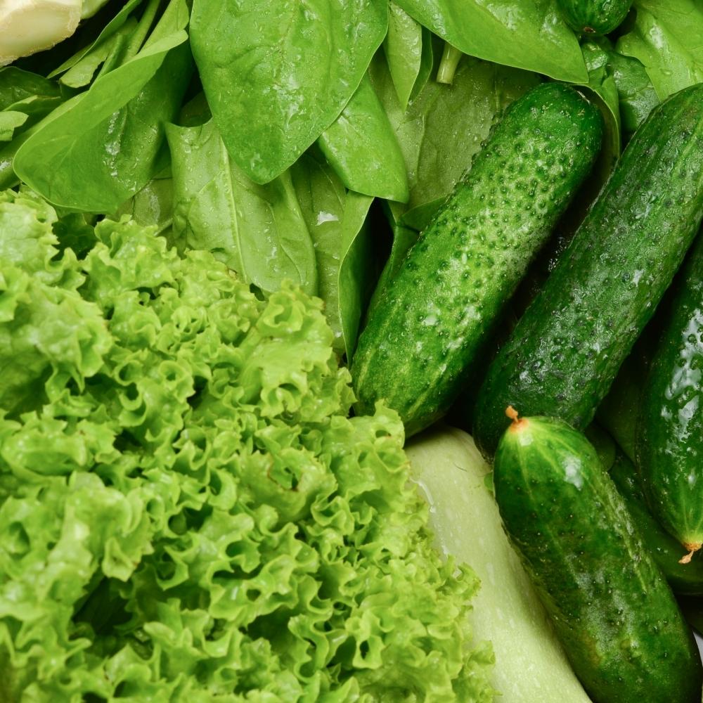 高雄蔬菜供應商