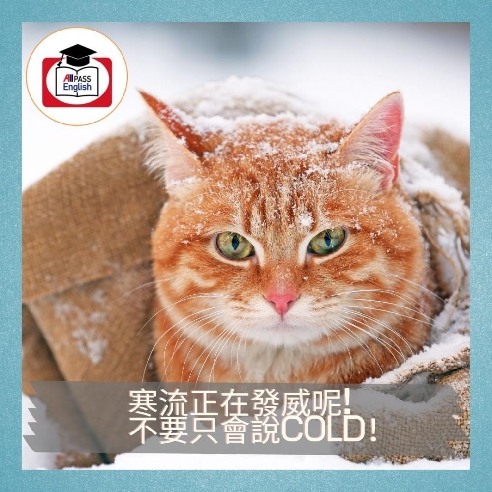 【每日一字】寒流正在發威呢!不要只會說cold!「冷」也有不同的層次,來看看英文如何表達