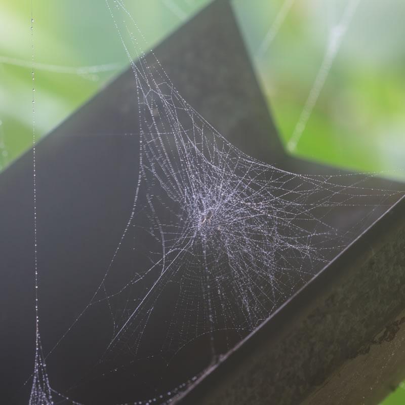 挑高蜘蛛網除塵