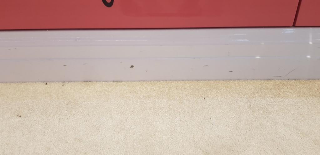 專櫃地毯清洗工程