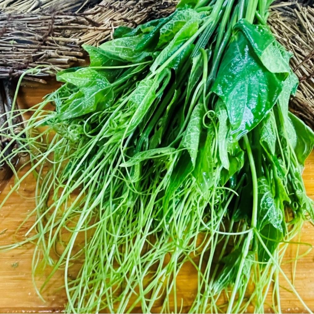 龍鬚菜 225克