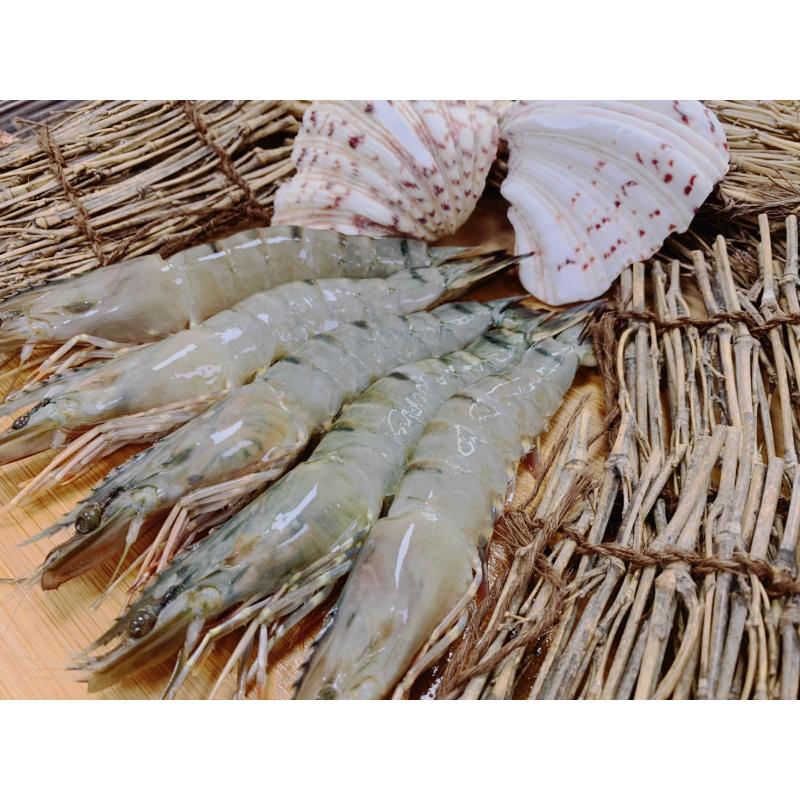 5P草蝦 240g