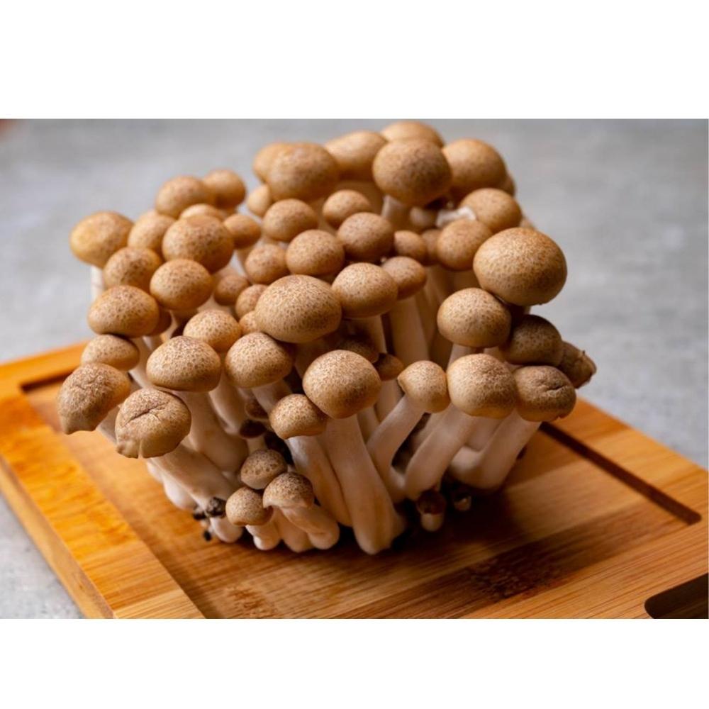 鴻喜菇 150克