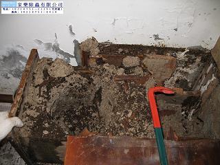日式建築屋頂白蟻施工