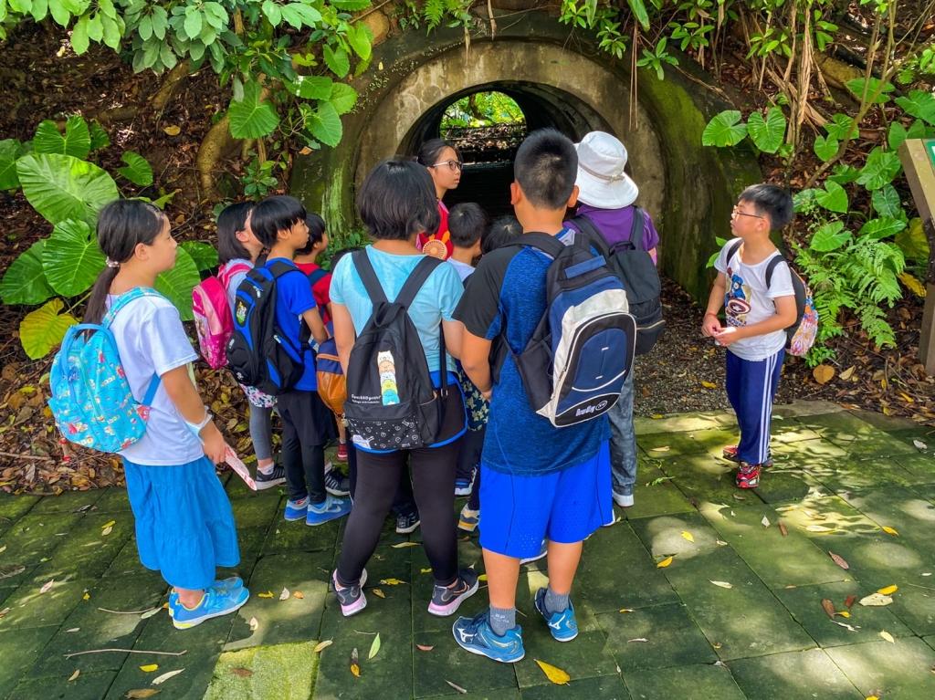 2020暑期活動:富陽生態公園