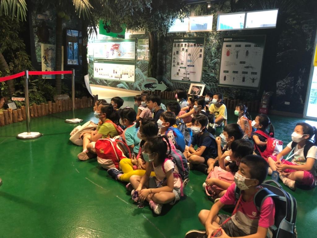 2020暑期活動 : 成功昆蟲博物館、華山文化園區一日遊