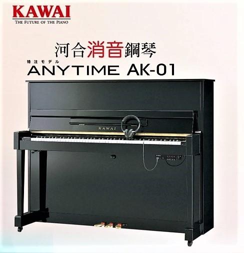 河合鋼琴ANYTIM