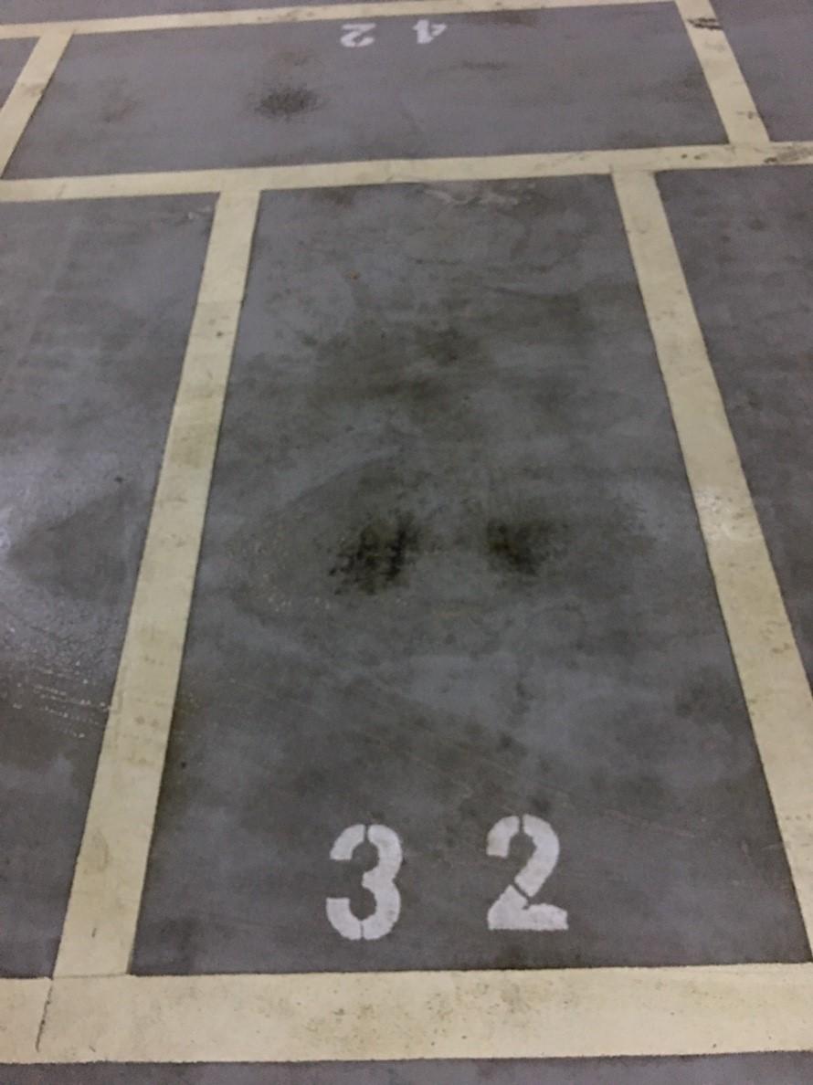 鈊象停車場清洗