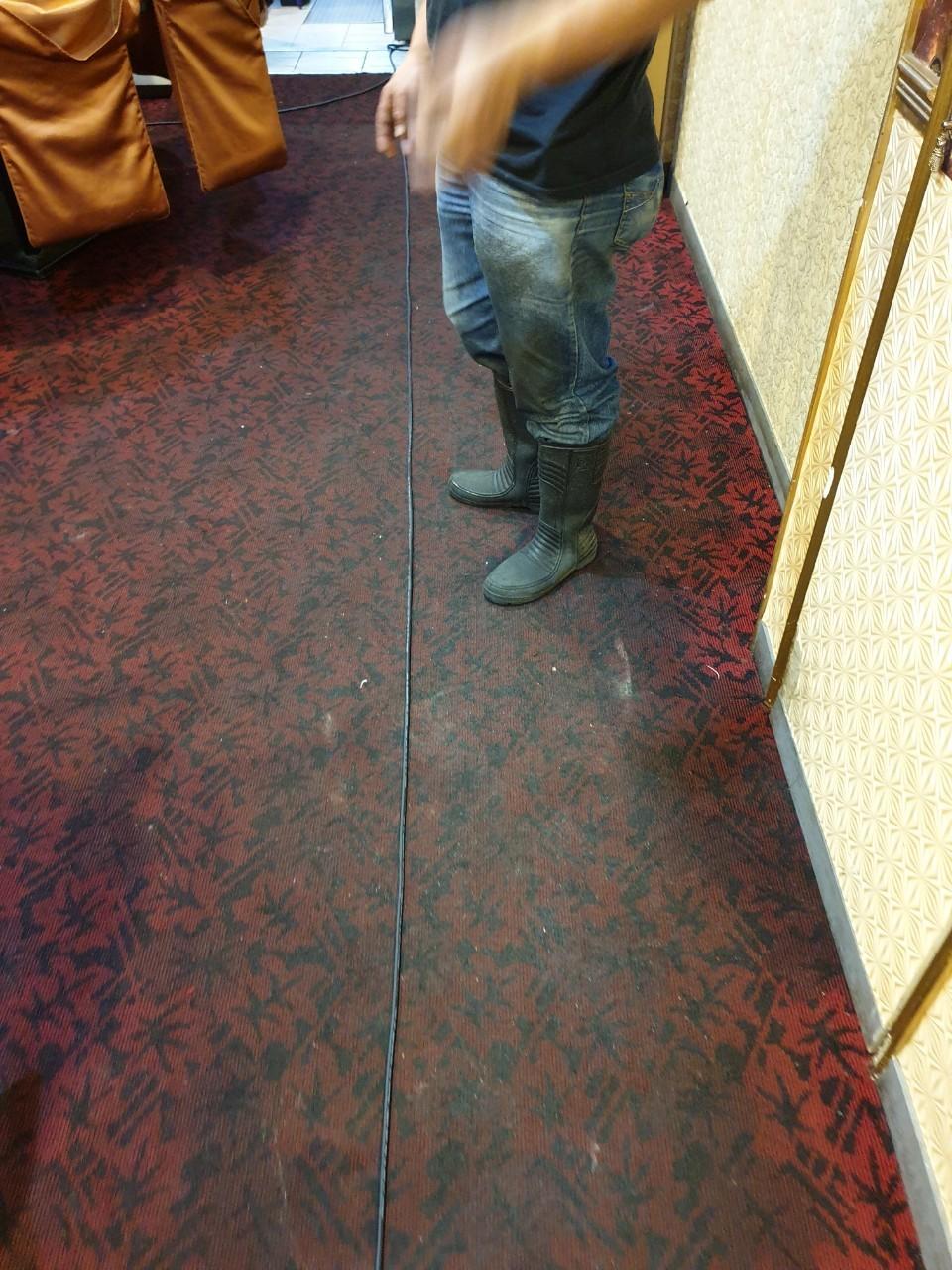 地毯清潔推薦/台北地毯清潔