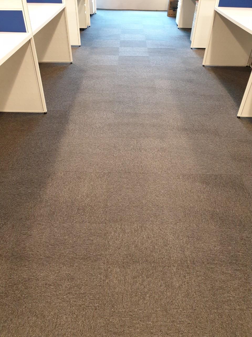 地毯清洗公司/台北洗地毯