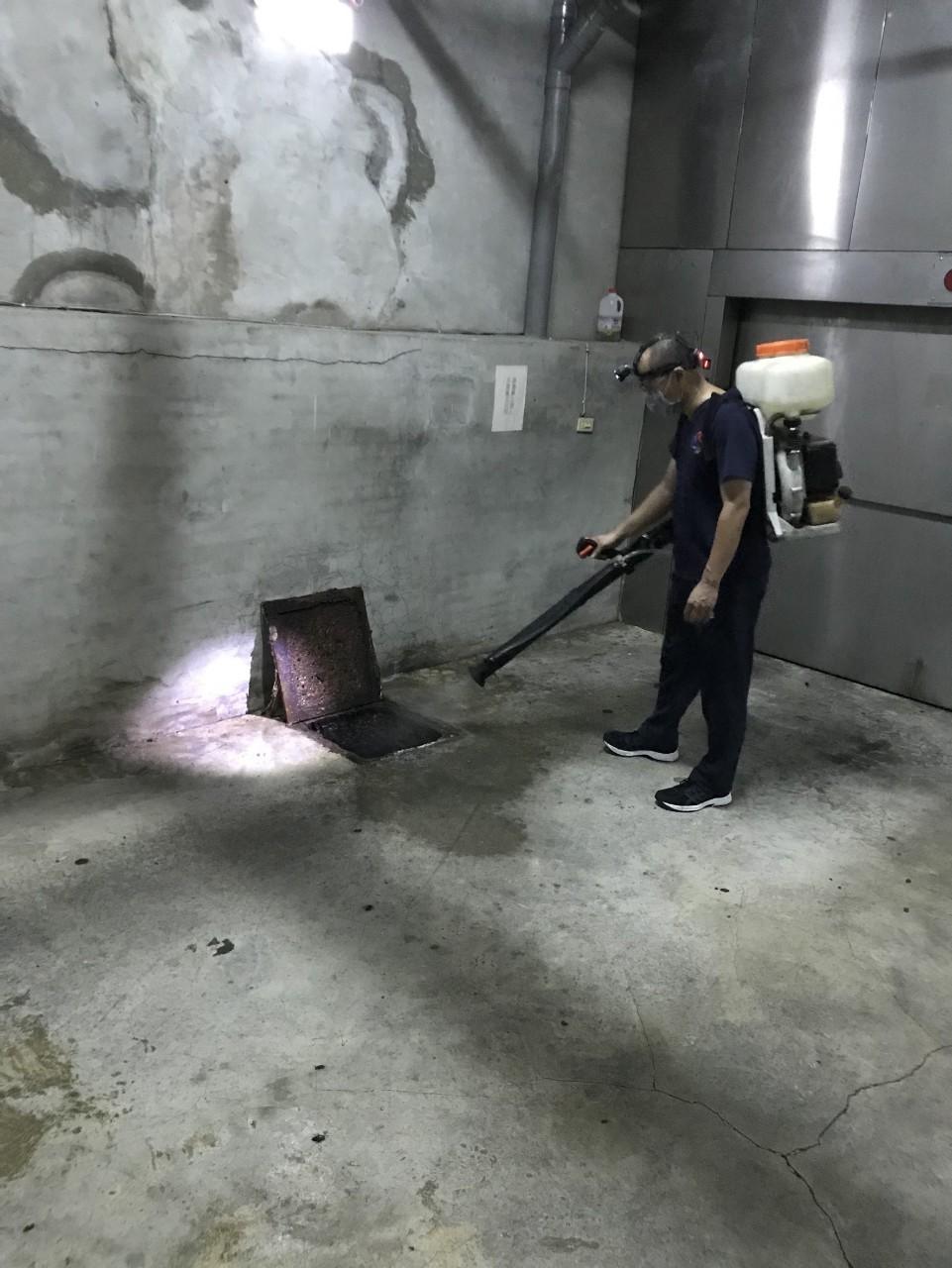 病媒防治公司/台北病媒防治