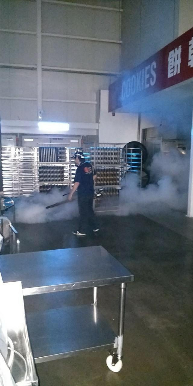 熱霧劑消毒