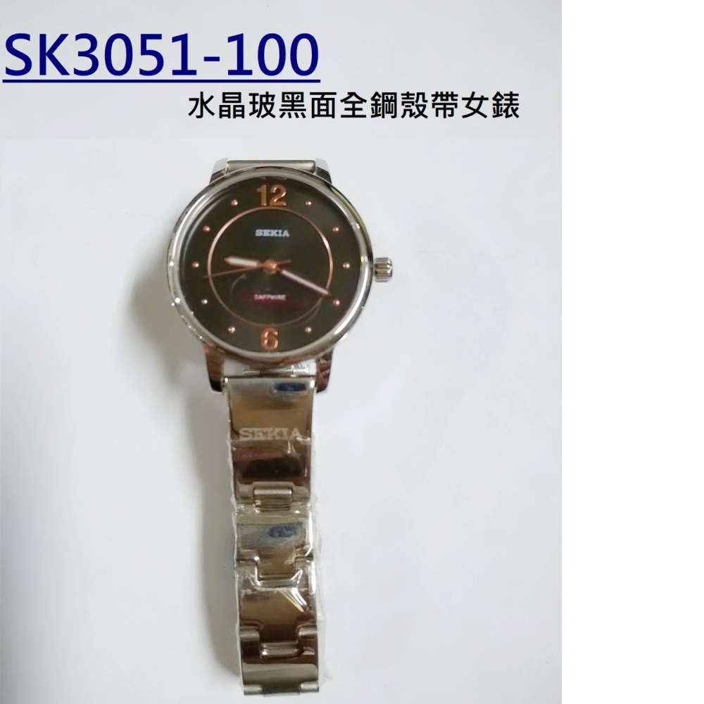 SK3051-100