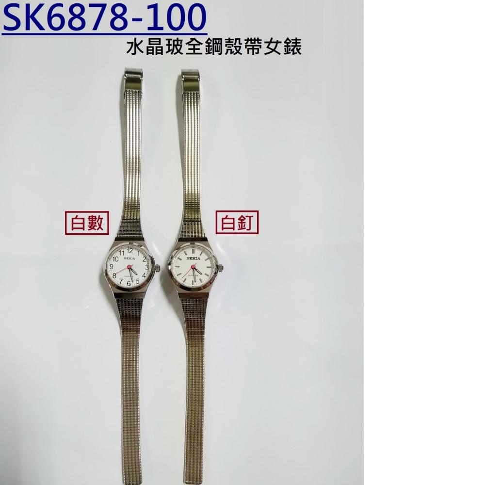 SK6878-100
