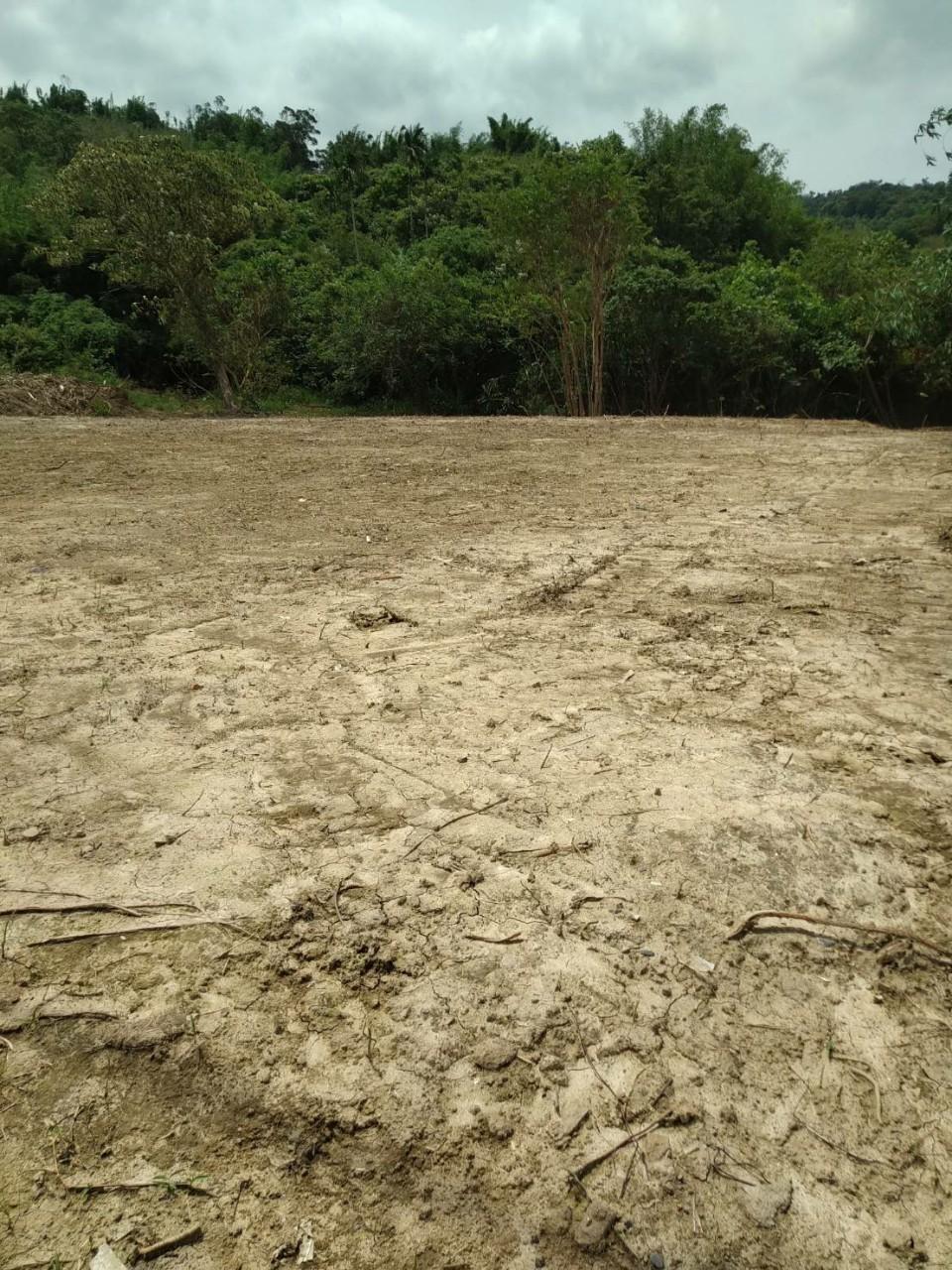 千坪私人土地除草整地工程