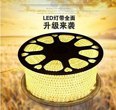 Led燈條 (5M)